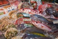 Fresh fish 1b. Fresh caught fish at the market Royalty Free Stock Photo