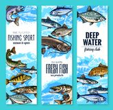 Fresh fish banner for seafood and fishing design. Fresh fish banner set for seafood product or fishing club flyer template. Sea and river fish sketches of salmon Stock Image
