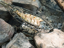 Fresh fish of a barbecue on a fire coals Stock Photo