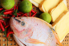 Fresh fish in the basket - for cooking. Royalty Free Stock Photography