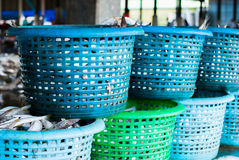 Fresh fish in a basket Stock Image