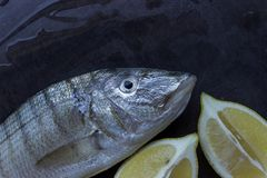 Fresh fish on a black stone table. Slices of juicy lemon . Conce royalty free stock photo