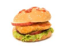 Fresh fish burger isolated Royalty Free Stock Image