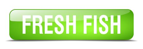 Fresh fish button. Fresh fish square 3d realistic isolated glass web button. fresh fish Stock Image