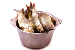 Fresh fish in a cast-iron kettle Stock Images
