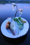 Fresh fish catch on a plate with vegetables above water by the lake in summer evening in Finland Royalty Free Stock Image