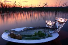 Fresh fish catch on a plate with vegetables above water by the lake at sunset time Royalty Free Stock Photos