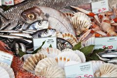 Fresh fish and clams in a market. In Milan Royalty Free Stock Images