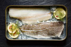 Fresh fish, cod fillets on ice with lemon slices, dill and red peppercorns, top view Royalty Free Stock Images