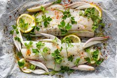 Fresh fish, cod fillets with parsley, lemon slices, onion and spices prepared for baking on parchment paper Royalty Free Stock Photography