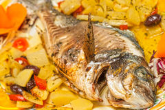 Fresh fish cooked with potatoes and tomatoes. Royalty Free Stock Photo