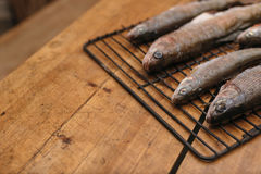 Fresh fish before cooking on the grill. Stock Photos