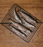 Fresh fish before cooking on the grill. Royalty Free Stock Image