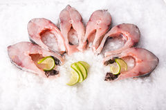 Fresh fish cut pieces Stock Image
