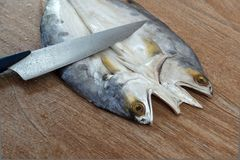 Fresh fish cut on wooden background Stock Image