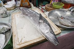 Fresh fish on cutting board at farmers seafood market. Samui island, Thailand Stock Images
