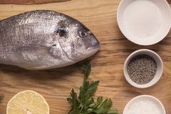 Fresh fish on a cutting board with a herbs, salt and lemon Stock Image