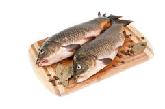 Fresh fish on the cutting board. With spices on white background Royalty Free Stock Photo