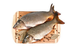 Fresh fish on the cutting board. With spices on white background Stock Photos
