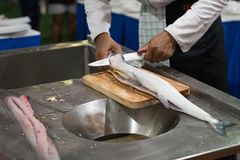 Fresh fish cutting for cook Stock Image