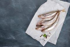 Fresh fish on dark vintage background Stock Photography