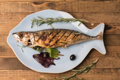 fresh fish royalty free stock photos