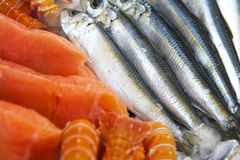 Fresh fish detail Stock Images