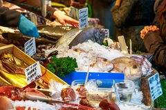 Fresh fish on display at Borough Market. Fresh fish and other seafood on display at Borough Market in London Stock Image