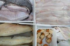 Fresh Fish on display for Sale Stock Image