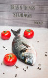 Fresh fish dorade gilt head bream stock photo