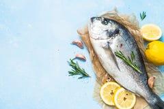 Fresh fish dorado on blue background. stock photo