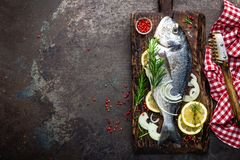 Fresh fish dorado with ingredients for cooking on wooden board. Raw sea bream or dorada fish on dark vintage metal background. Die royalty free stock photography