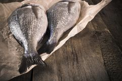 Fresh fish dorado on the parchment paper on the wooden table. copy space.  Royalty Free Stock Images