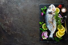 Fresh fish dorado. Raw dorado fish and ingredient for cooking on board. Sea bream or dorada fish on kitchen table Royalty Free Stock Images