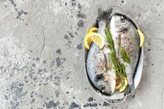 Free Fresh Fish Dorado. Raw Dorado Fish With Lemon And Rosemary. Sea Bream Or Dorada Fish Royalty Free Stock Image - 114971596
