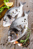 Fresh fish dorado. Royalty Free Stock Images