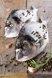 Fresh fish dorado Royalty Free Stock Photography