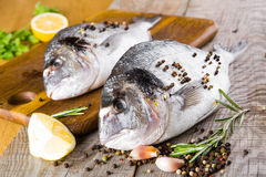 Fresh fish dorado. Royalty Free Stock Photo