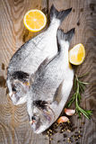 Fresh fish dorado Royalty Free Stock Photos
