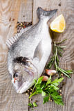 Fresh fish dorado Stock Photos