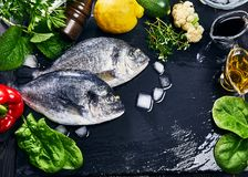 Fresh fish dorado top view. Spicy herb and vegetables. Spice on black stone board. Healthy food cooking. Royalty Free Stock Image