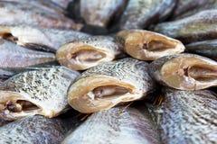 Fresh fish drying Stock Photography
