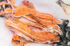 fresh fish file sliced Royalty Free Stock Photography