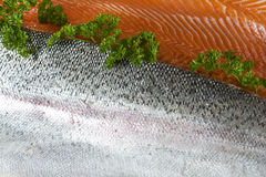 Fresh Fish Fillets Stock Photo