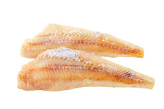 Fresh fish fillets. Isolated on white Stock Images