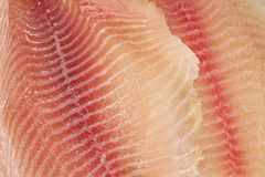 Fresh fish fillets  background Royalty Free Stock Image