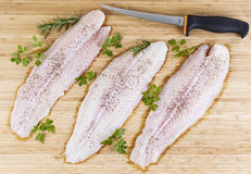 Fresh Fish Fillets with Fillet Knife Stock Images