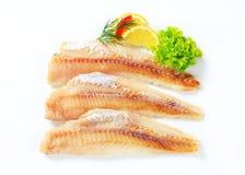 Fresh fish fillets. Studio shot of fresh fish fillets Stock Images
