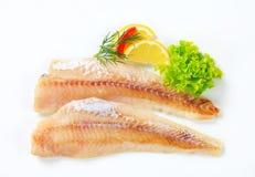 Fresh fish fillets. Studio shot of fresh fish fillets Stock Photos