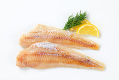 Fresh fish fillets Stock Images